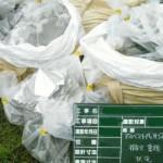 アスベスト廃棄物の集積、運搬、処分