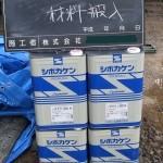 rishin01